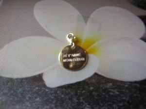 charms plaque gm
